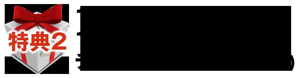 特典213万円の広告費で 130組以上集めたチラシの構成解説(非売品)