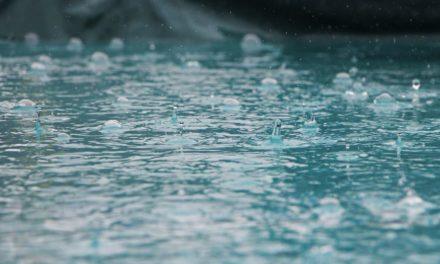 西日本豪雨に関して